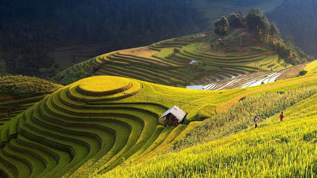 Mu Cang Chai | Asia Hero Travel | Vietnam