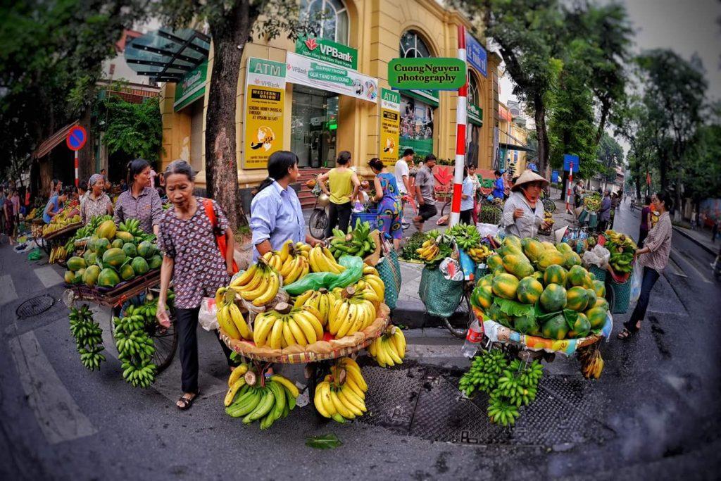 The gastronomy of Vietnam